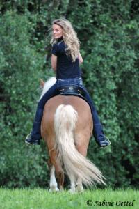 Physiothearpie für Reiter